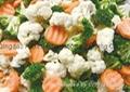 冷冻混合蔬菜 2