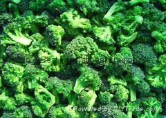 速冻绿花菜 (西兰花) 2