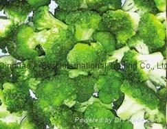 速冻绿花菜 (西兰花) 1