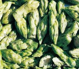 凍干綠蘆筍 1
