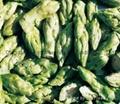 冻干绿芦笋