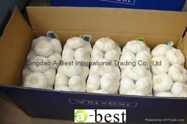 2017 Chinese new crops Fresh Garlic,NORMAL WHITE 13