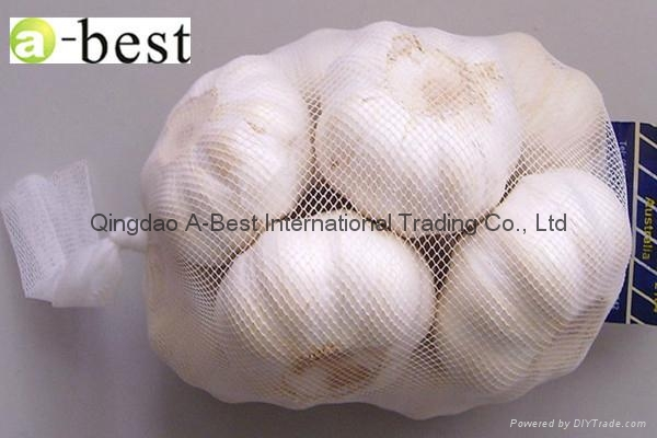 2017 Chinese new crops Fresh Garlic,NORMAL WHITE 20