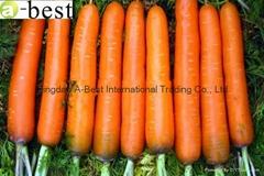 保鮮胡蘿蔔
