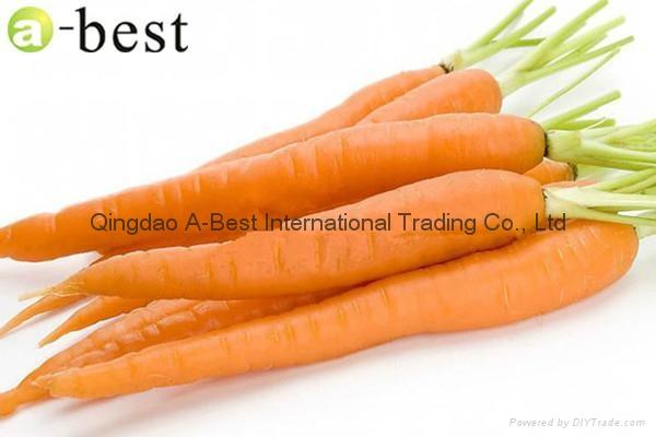 保鮮胡蘿蔔 4