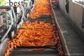 保鮮胡蘿蔔 3