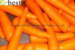 山東保鮮胡蘿蔔