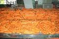 保鲜胡萝卜 12