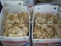 Organic Air dried Ginger 17