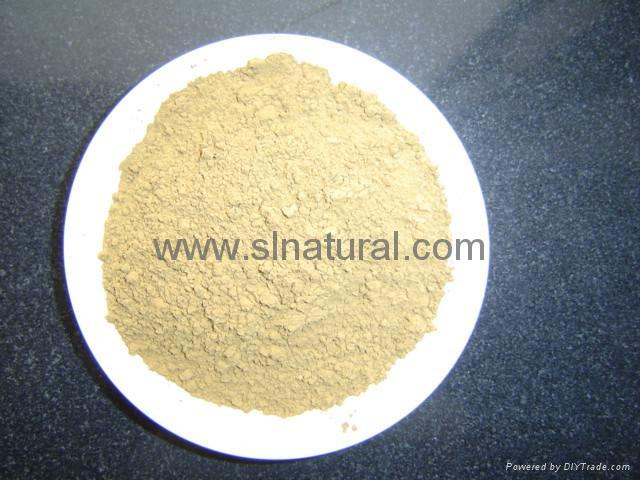 Ginseng Root Extract 1