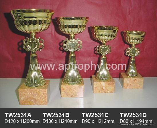 金屬獎杯-TW2531 1