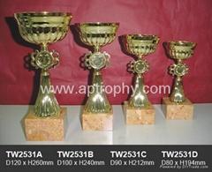 金属奖杯-TW2531
