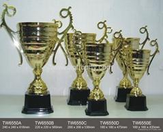 金屬獎杯-TW6550