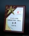 Wooden Award-AW28