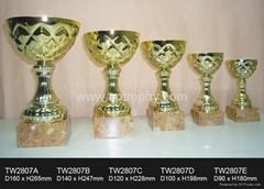 金屬獎杯-TW2807