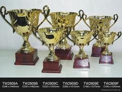 金属奖杯-TW2809