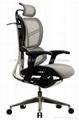 最新款椅子