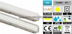 IP65 60W LED 1200mm Batt