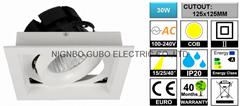 [CUTOUT:125x125MM] Adjustable 30W COB LED Spotlight