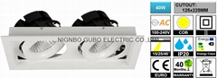 [CUTOUT:125x225MM] Adjustable 2x20W COB LED Spotlight