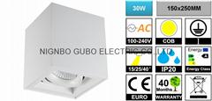[Ceiling Mounted] Adjustable 30W COB LED Spotlight