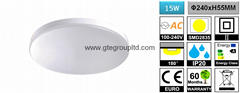 15W Ceiling Light [D240MM]