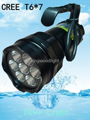 dive Led lights