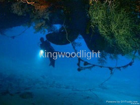 dive Led lights 4