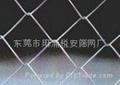 围篱网围栏网 2