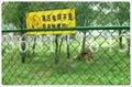 围栏网 1