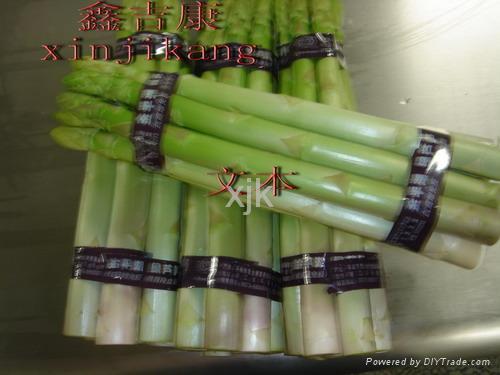 綠蘆筍 1