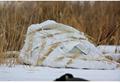 野鴨帳篷 3