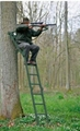 High seat collapsible or rear feet
