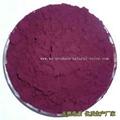紫玉米色素