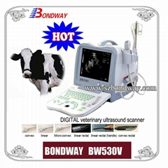 Digital  Veterinary Ultrasound Scanner BW530V