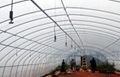 農業四出口霧化式微噴頭 2