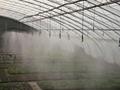農業四出口霧化式微噴頭 3