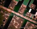国产连续变倍体视显微镜 5