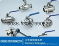 butterfly valve and check valve