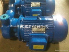 ¾W1.44-10旋涡式给水泵