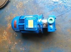1W2.5-12旋涡式锅炉给水泵