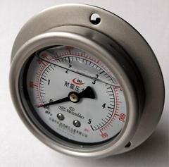 轴向偏心充油耐震压力表