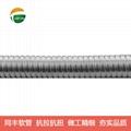 InterLocked Stainless Steel Flexible Conduit