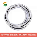InterLocked Stainless Steel Flexible Conduit 18