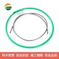 TongFeng Flexible Metal Conduits Applications Case 12