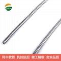 傳感線路保護金屬軟管 抗拉抗扭金屬軟管 11