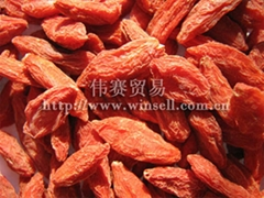 Chinese Wolfberry Fruit, Goji berry, Lycium Chinese
