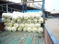 12m width greenhouse film  5