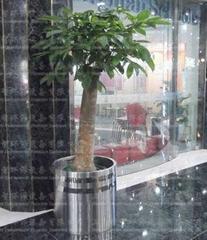 Stainless Steel Flower pot(SZHP-173)