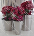 Stainless Steel Flower pot(SZHP-145)